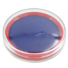 雪奥(XUEAO)0533 透明圆形原子印台  Φ63mm 蓝色